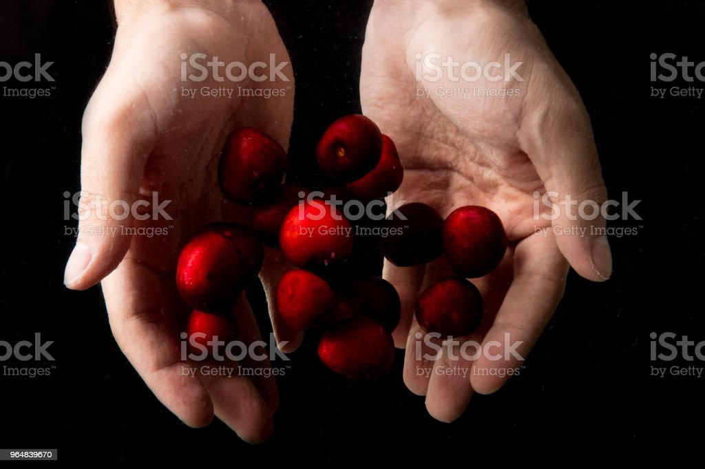 Handful Cherry royalty-free stock photo