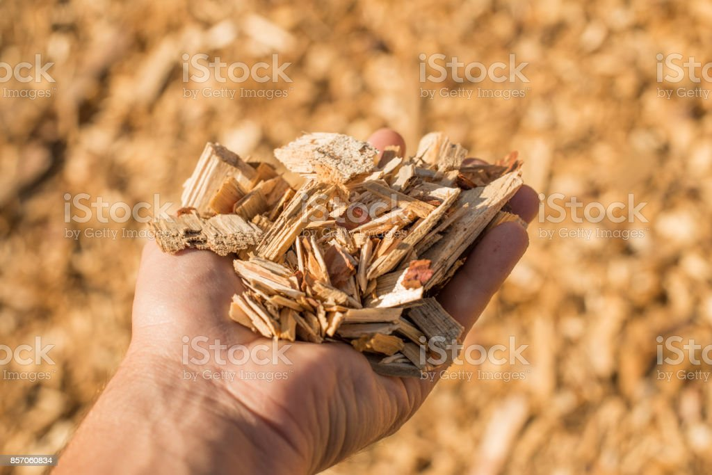 A handful of dry technological wood chips. stock photo