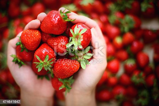 Top view of unrecognizable caucasian woman holding two handfuls of fresh strawberries over blurry pile of strawberries.