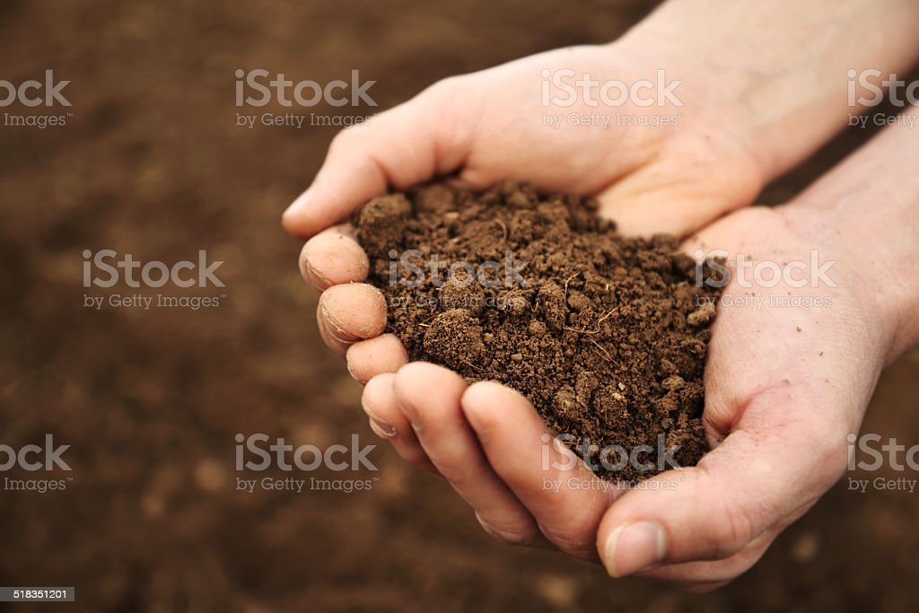 Handful of Rich Brown Soil stock photo
