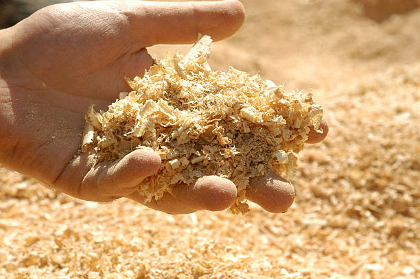 Handful of sawdust over a sawdust background stock photo