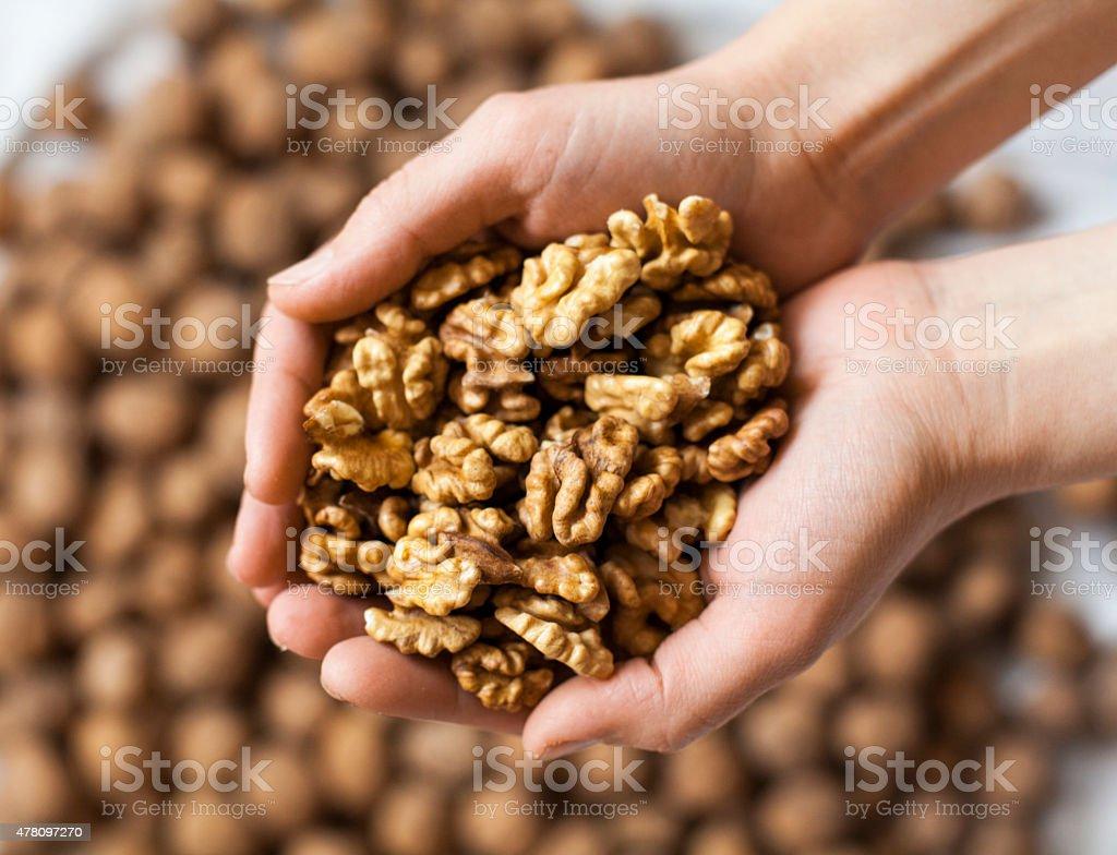 Handful of walnuts kernels stock photo