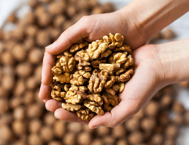 Handful of walnuts kernels Handful of walnuts kernels against the walnuts in shell background walnut stock pictures, royalty-free photos & images