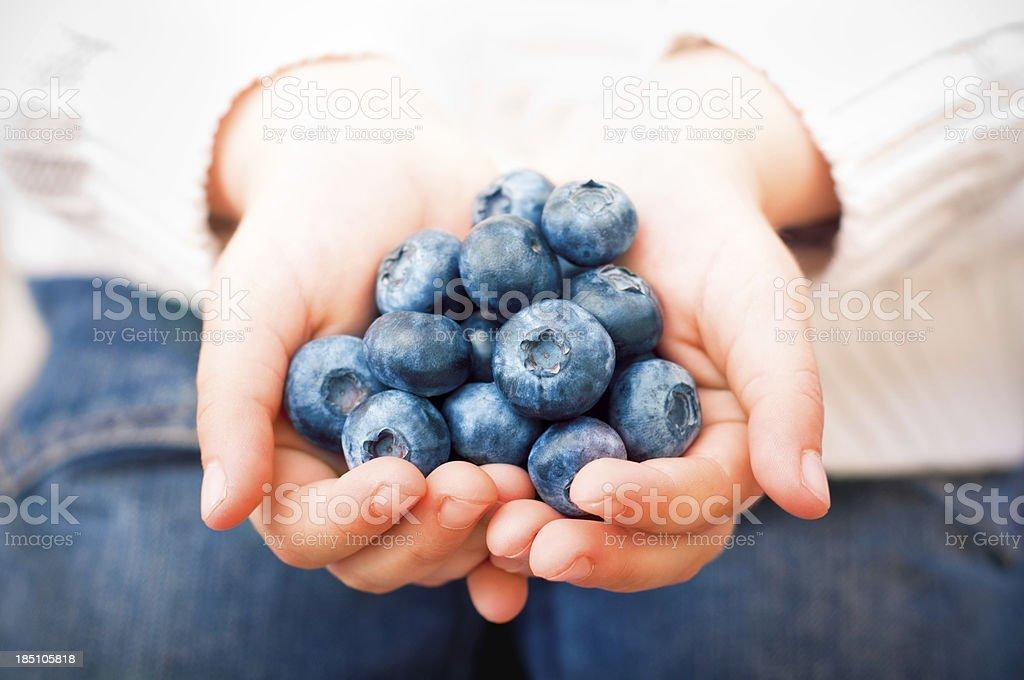handfull of blueberries royalty-free stock photo
