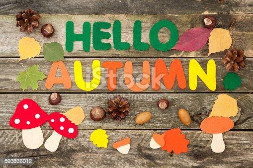 istock Handmade autumn card. Inscription Hello Autumn of felt 593336012