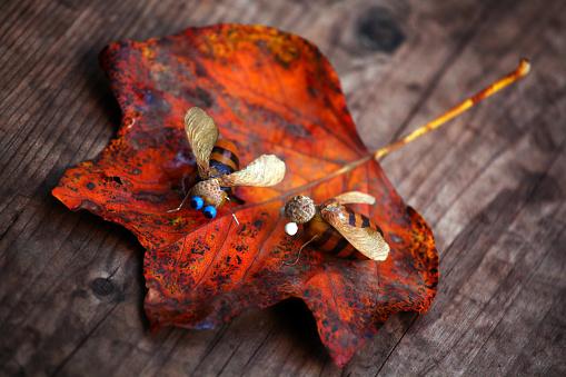 istock Handmade bee acorn table autumn leaf 1039677234