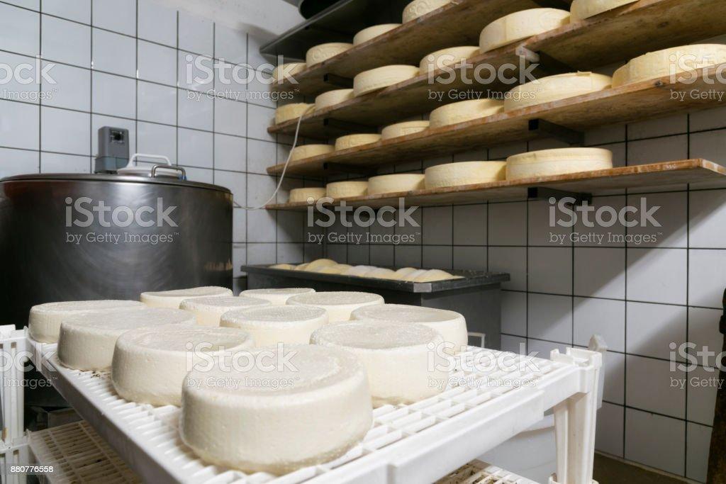 handgefertigte italienische Käseherstellung in Bergbauernhof – Foto