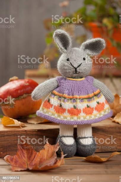 Handmade knitted rabbit soft toy yarn balls knit needles turks turban picture id882295574?b=1&k=6&m=882295574&s=612x612&h=umpcdwdjfxvznkfy9kw9mkccnsuga2uimr7 pg 7gt8=
