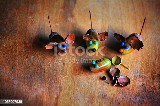 istock Handmade mouse acorn table 1037007938