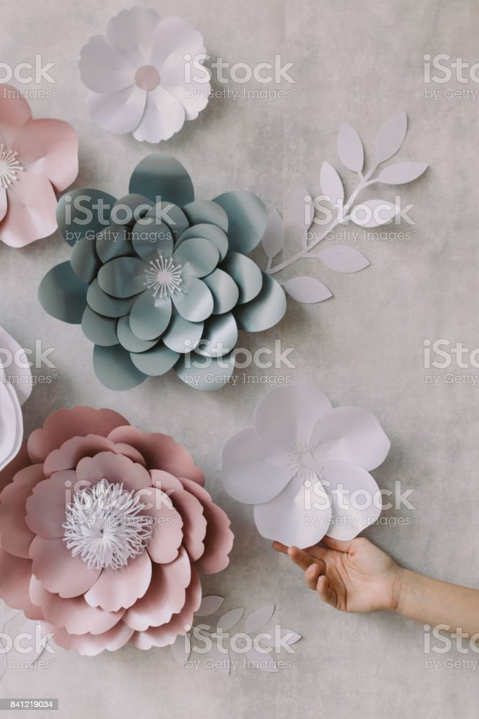 Handmade Paper Flowers As Wall Decoration Stock Photo Download