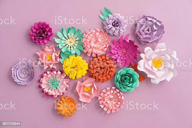 Handmade paper flowers picture id637223544?b=1&k=6&m=637223544&s=612x612&h=xcagokk7b6hsenxlv7gonmon9g gein uhlp1jfsgle=