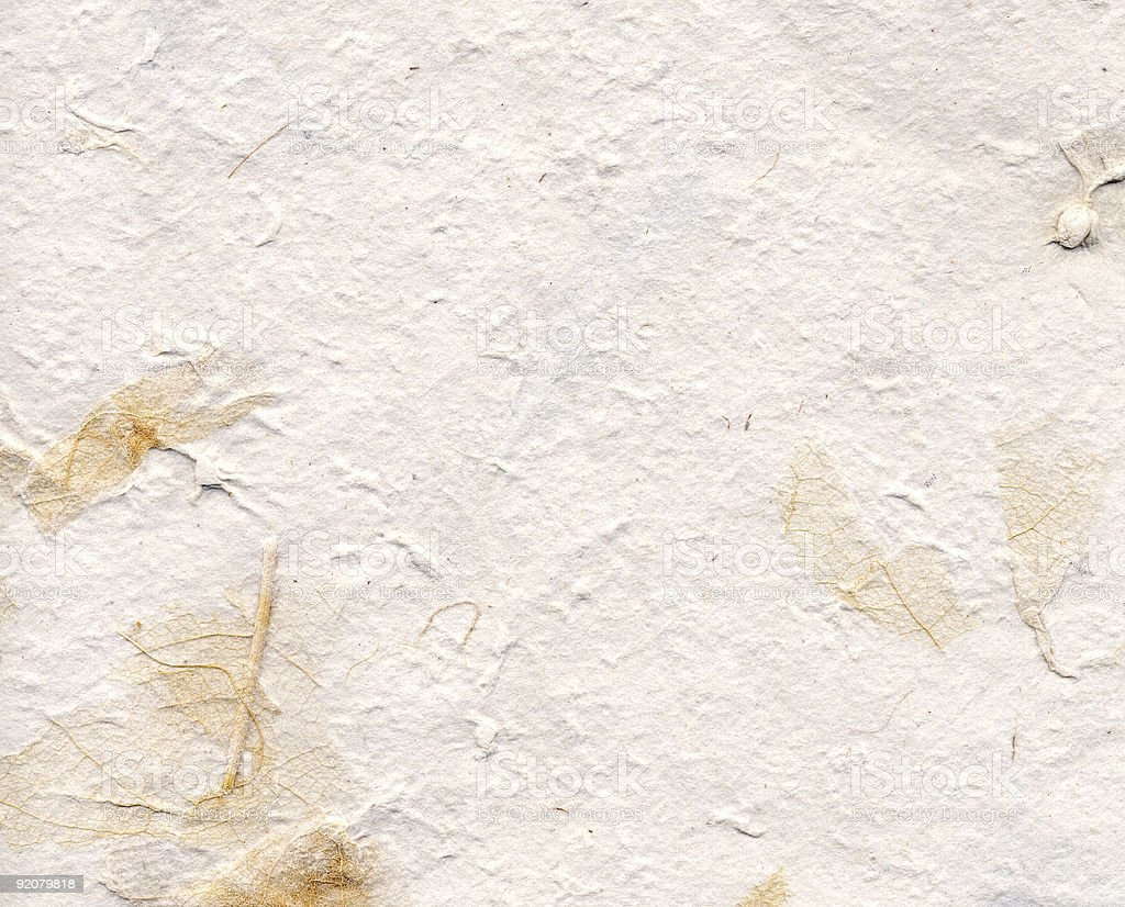 Handmade Paper w/ Leaves royalty-free stock photo