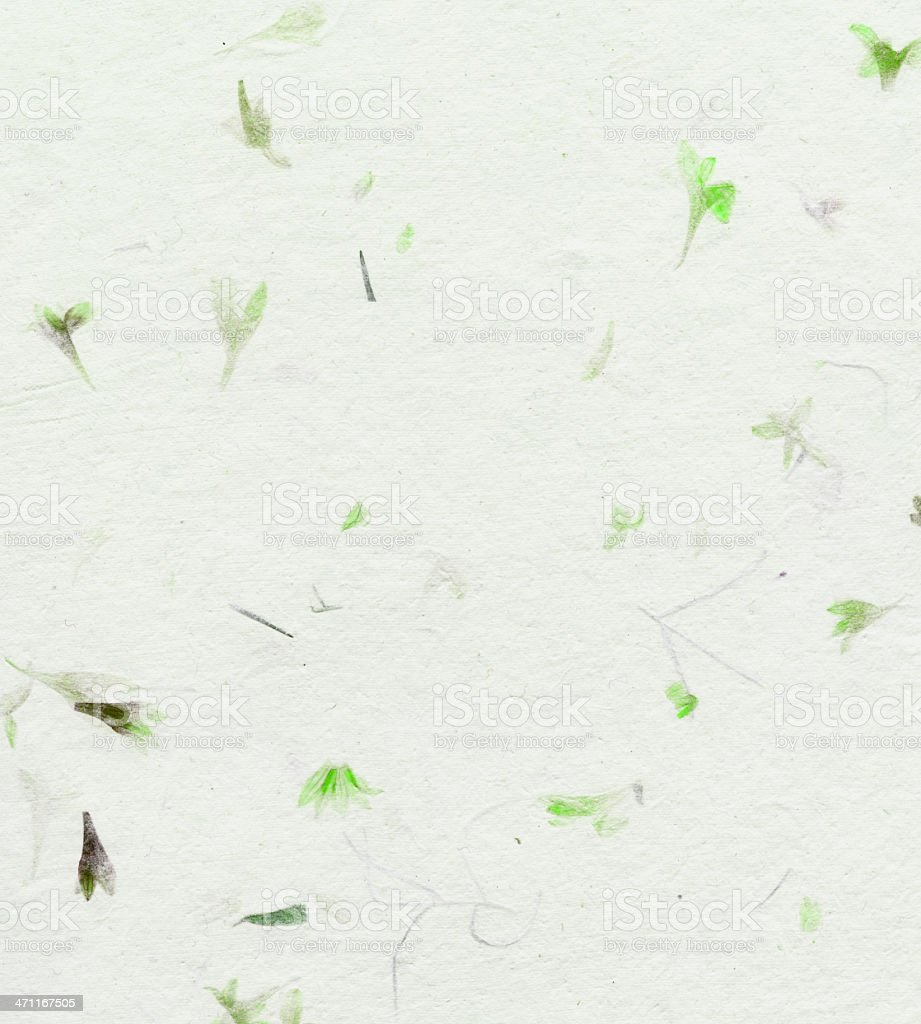 handmade paper with dried flowers stock photo