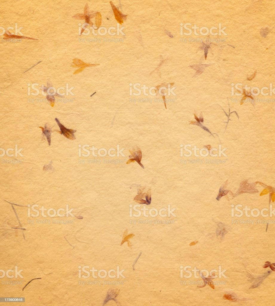 handmade paper with flowers royalty-free stock photo