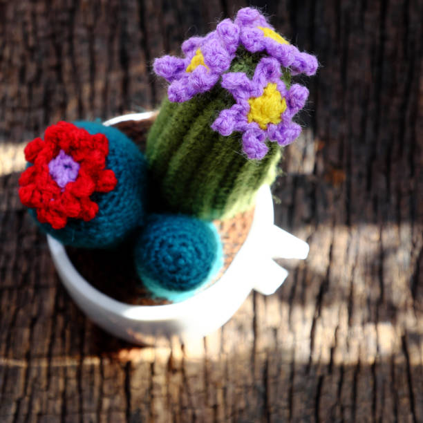 handmade product for decorate, cacti, cactus flower, ornament plant pot stock photo