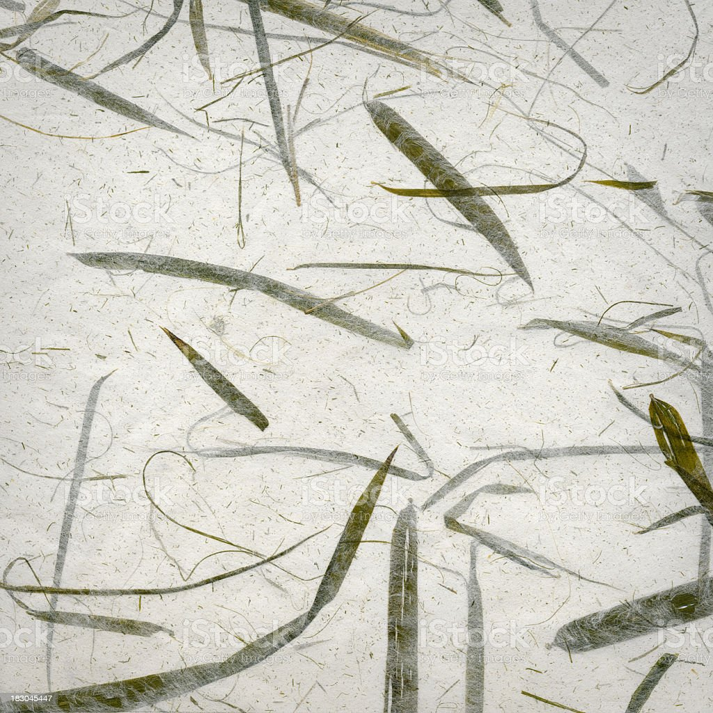 Handmade recycled bamboo leaf paper background. royalty-free stock photo