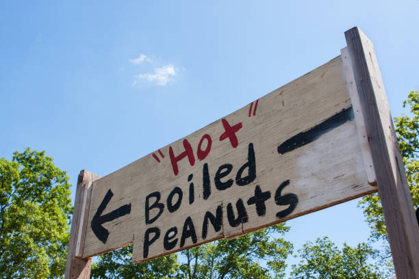 Handpainted Festival Sign Points Toward Sale Of Hot Boiled Peanuts stock photo