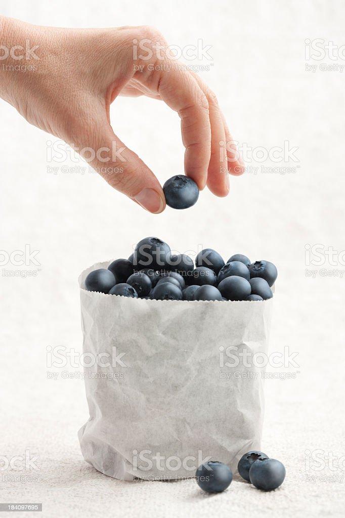 Handpicked fresh blueberries royalty-free stock photo