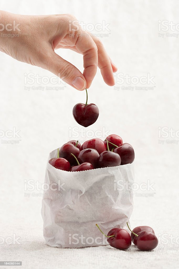 Handpicked fresh cherries stock photo