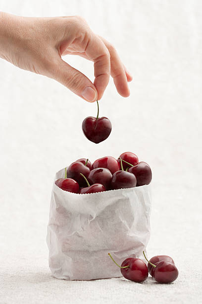 Handpicked fresh cherries stock photo