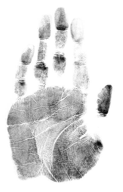 Impressão da mão em um fundo branco - foto de acervo