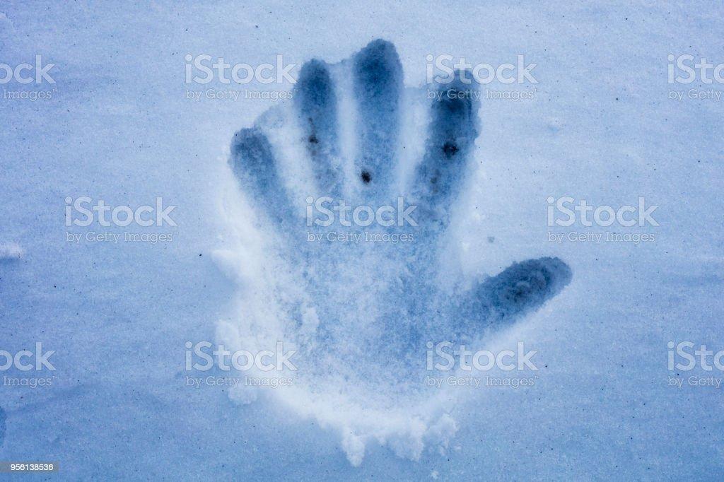 A handprint on dirty snow stock photo
