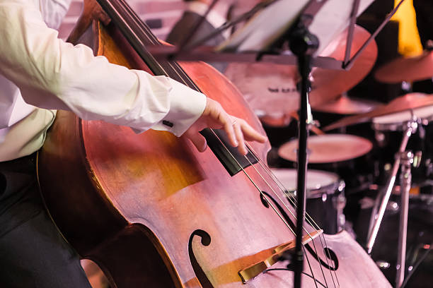 hands and contrabass stock photo