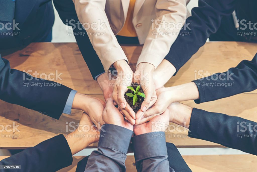 Hands business Team Work Cupping young Plant Nurture Environmental and reduce global warming earth. Ecology Concept stock photo