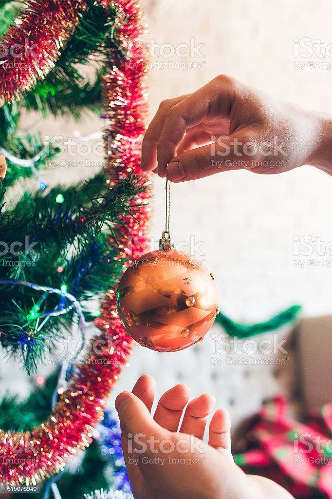 Hands hanging golden decorating ball on pine tree stock photo