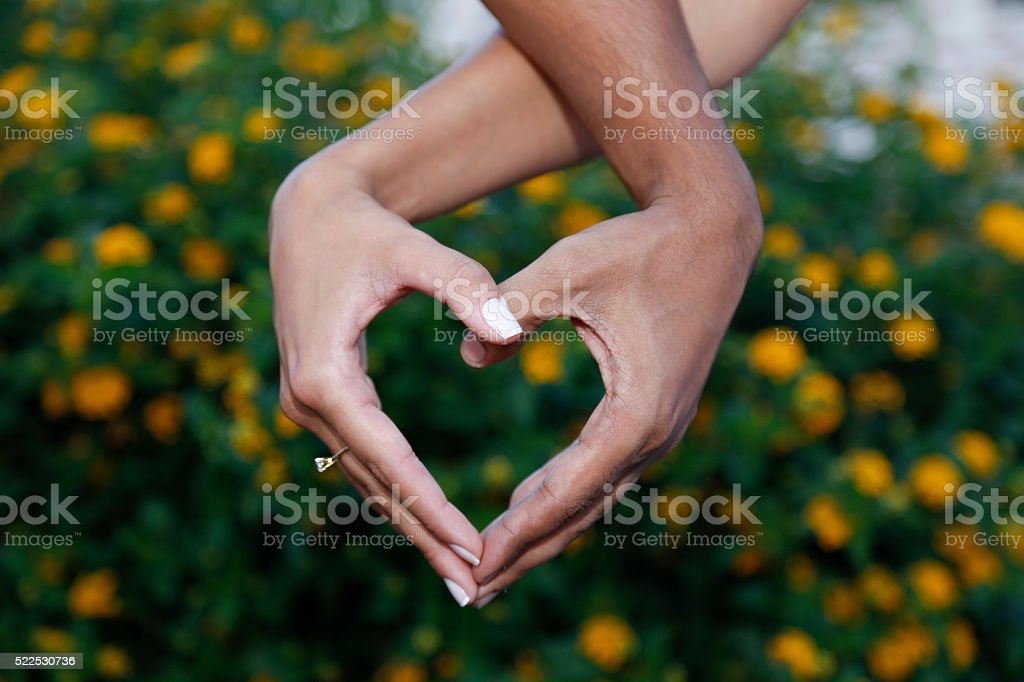 Hands heart shaped stock photo