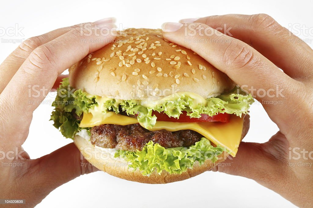 hands hold a cheeseburger royalty-free stock photo