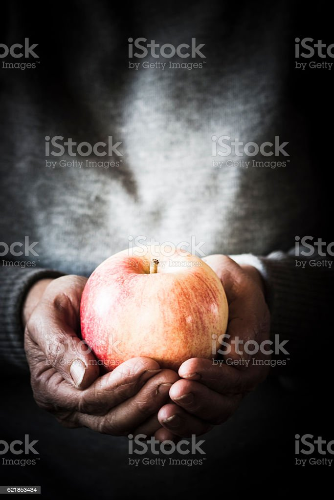 Hands holding a beautiful apple stock photo