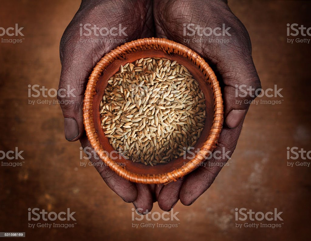 Hands holding a bowl with rye stock photo