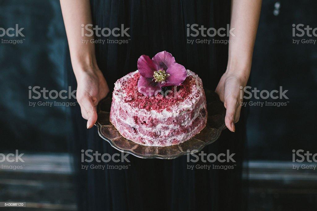 Hands holding a red velvet cake stock photo