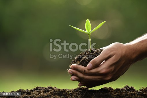 istock Hands holding and caring a green young plant 1089961140