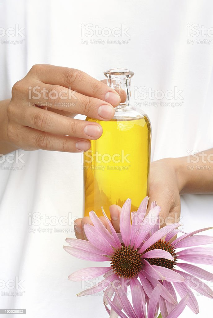 Hands holding bottle of essential oil and coneflowers stock photo