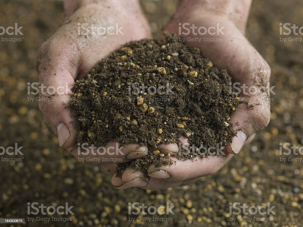 Hands holding dirt royalty-free stock photo