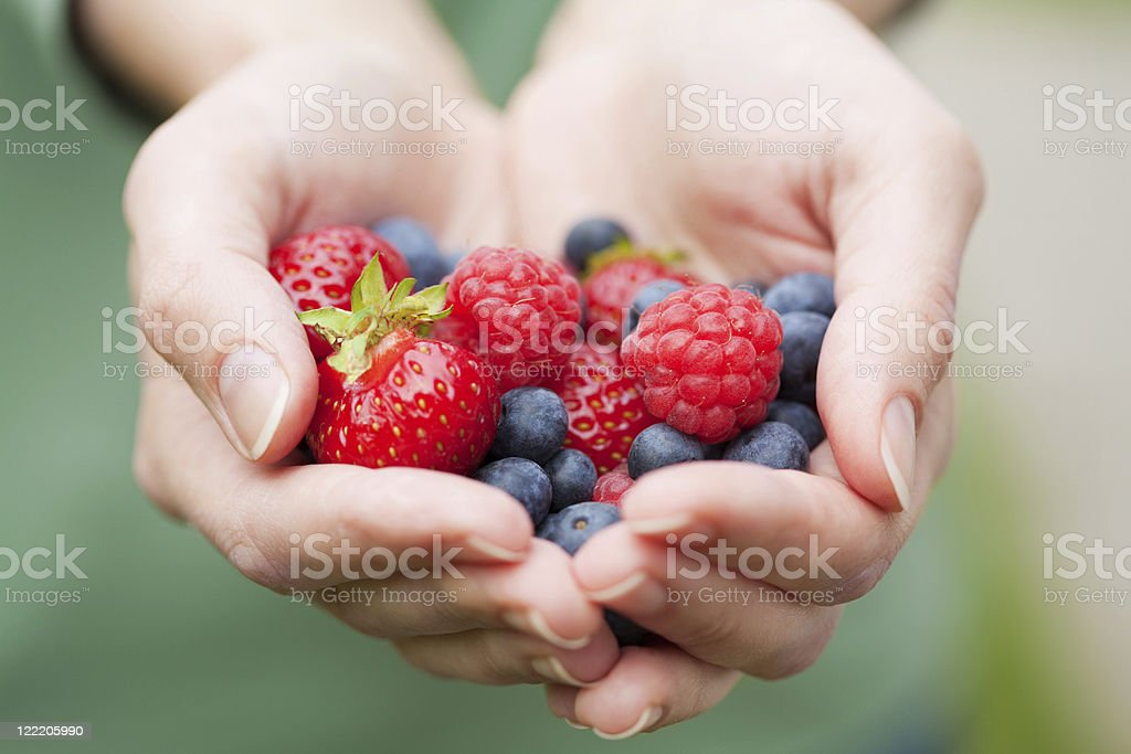 hands holding fresh berries stock photo