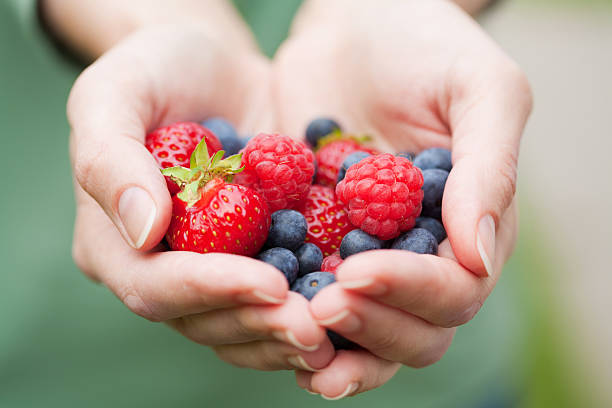hands holding fresh berries hands holding fresh berries scooping stock pictures, royalty-free photos & images