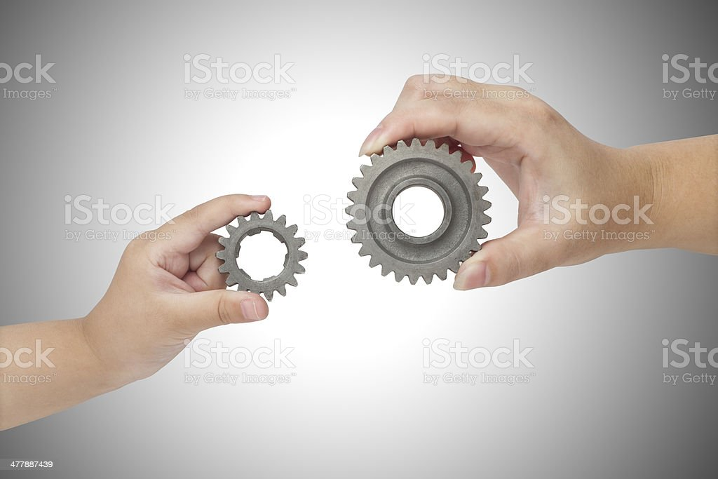Hands holding gear stock photo