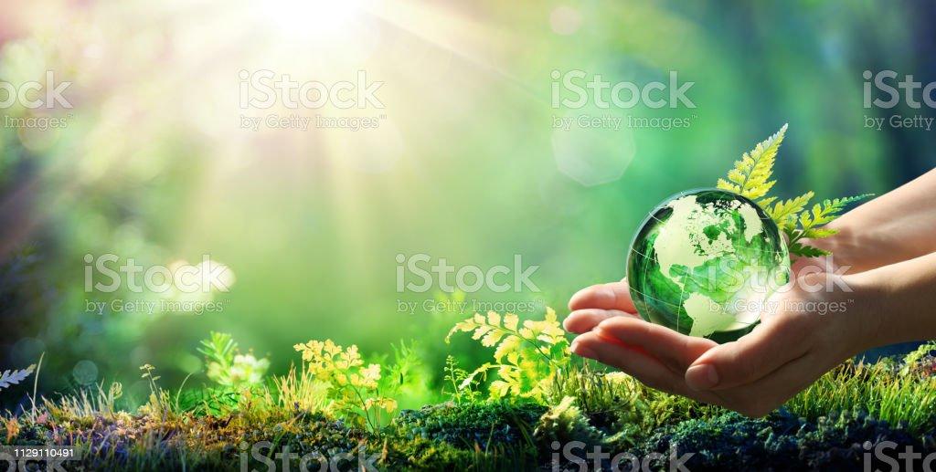 手拿著地球玻璃在綠色森林-環境概念-由美國宇航局提供的圖像元素 - 免版稅世界地圖圖庫照片