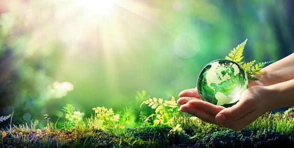 手拿著地球玻璃在綠色森林環境概念由美國宇航局提供的圖像元素 照片檔及更多 世界地圖 照片