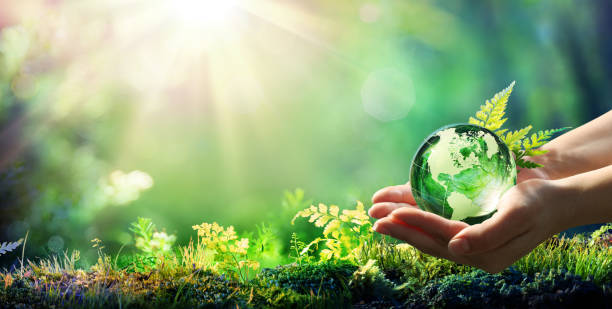 hands holding globe glass in green forest - environment concept - element of image furnished by nasa - globe zdjęcia i obrazy z banku zdjęć