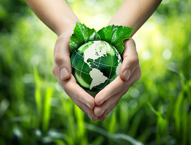 hands holding green globe with grassy background - sustainable living stock pictures, royalty-free photos & images