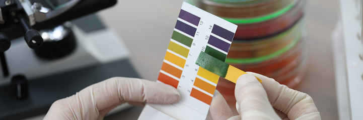Hands holding litmus test paper for soil analysis. Litmus paper shows acidity, chemical analysis. Soil sampling for ph test. Strips and scraps filter paper tape. Accurate measurement results