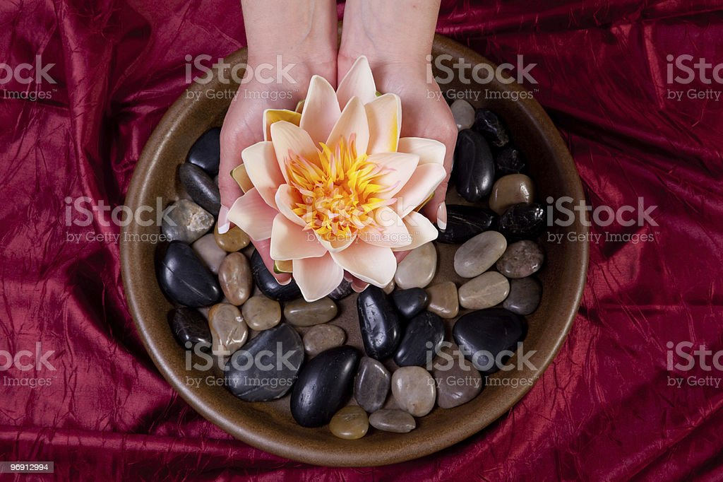 Hands holding lotus flower royalty-free stock photo