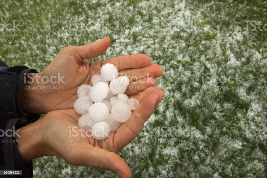 Hands holding quarter sized hail stones Denver Colorado stock photo