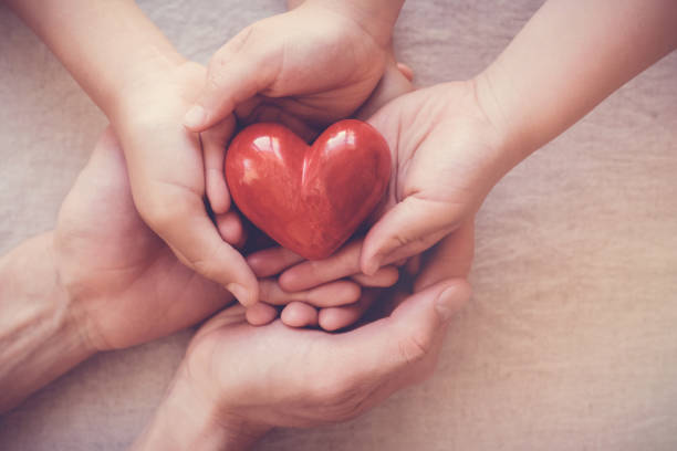 hands holding red heart, health insurance, donation concept stock photo