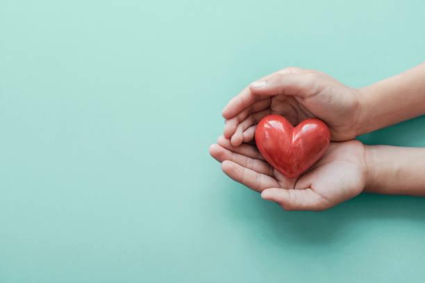 händer som håller rött hjärta på blå bakgrund, hälsovård, kärlek, organdonation, familjeförsäkring och csr-koncept, world heart day, världshälsodagen - omsorg bildbanksfoton och bilder