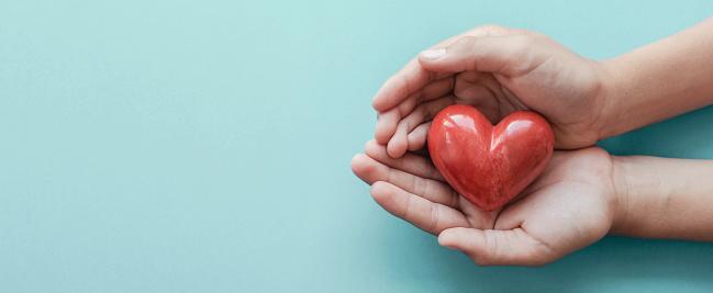 파란 배경 건강 관리 사랑 장기 기증 가족 보험 및 Csr 개념 세계 심장의 날 세계 건강의 날에 빨간 마음을 들고 손 World Blood Donor Day에 대한 스톡 사진 및 기타 이미지